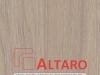 ALTARO_Dab Urban Oyster